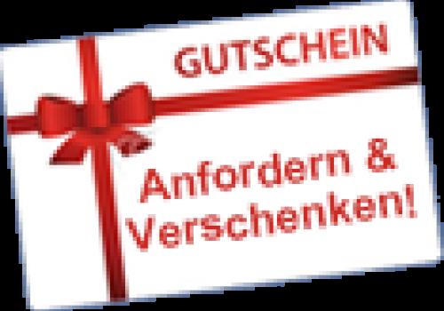 Geschenkidee Tandemflug